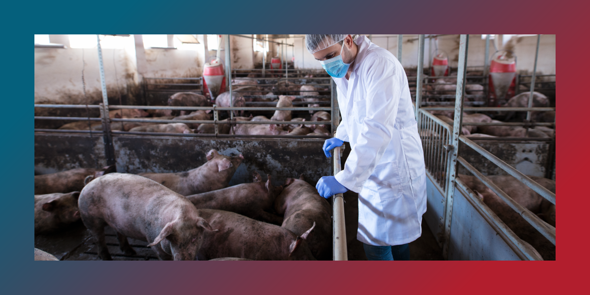 Animal Vaccination: Our Best Defense Against the Next Pandemic